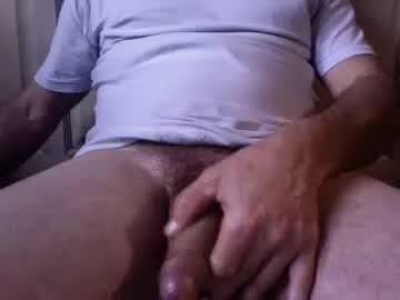 dingoe9 chaturbate